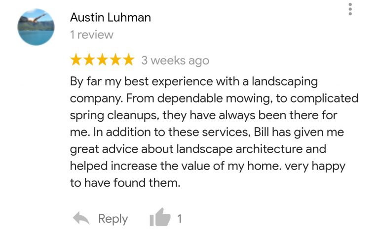 google-review_1