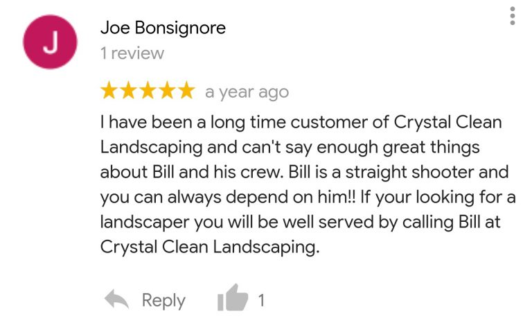 google-review_4